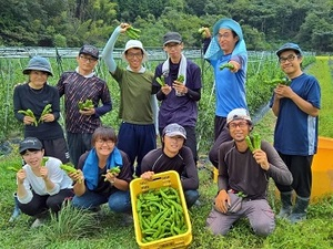 福知山市×野菜/法人【33454】-top