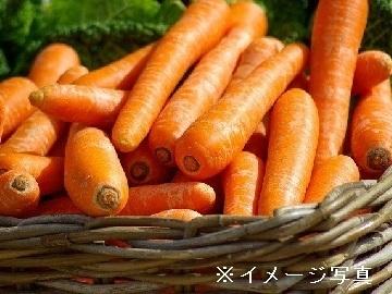 鉾田市×露地野菜/法人【33489】-top