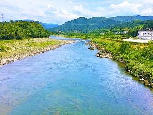 日本の農業の現在と今後