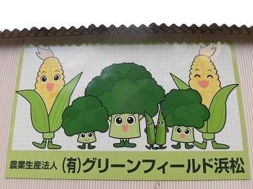 有限会社グリーンフィールド浜松-top