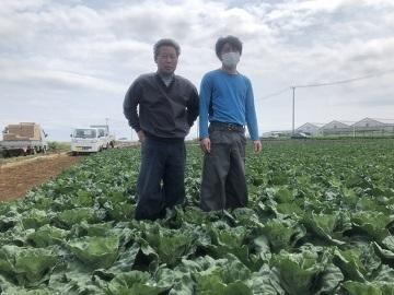 吉田農園-top