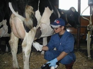 更別酪農ヘルパー有限責任事業組合-1