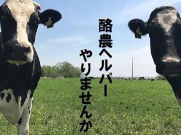 更別酪農ヘルパー有限責任事業組合-top