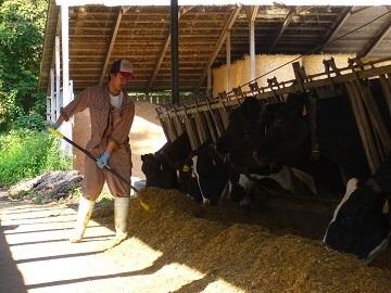 更別酪農ヘルパー有限責任事業組合-6