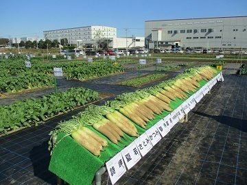 渡辺農事株式会社-5