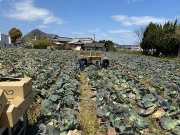 三谷農園-1