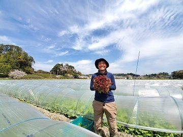 中島農園株式会社-top