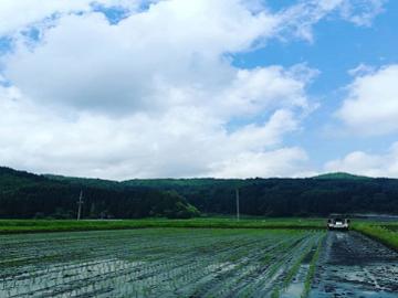 上水内郡×野菜/法人-top