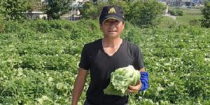 下妻市×野菜/法人【32122】