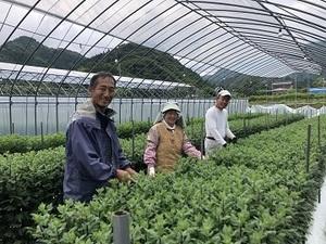 株式会社京都ファーム彩-top
