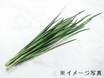 足利市×施設野菜/法人【33816】