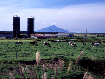 天塩町農業協同組合-2