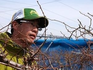 吾一農園株式会社-top