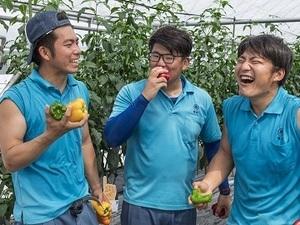 タキイ研究農場付属園芸専門学校-top