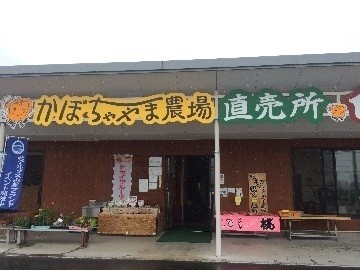 有限会社かぼちゃやま農場-top