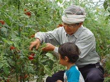 農事組合法人YONESATA-top