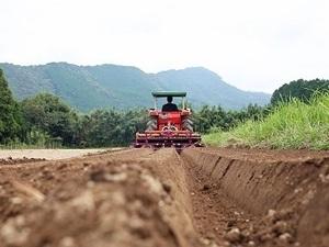 農業生産法人株式会社さかうえ-top