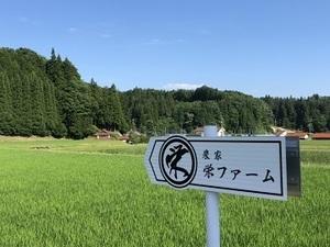 栄ファーム-top