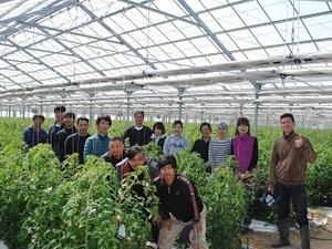 株式会社天芯農場-top