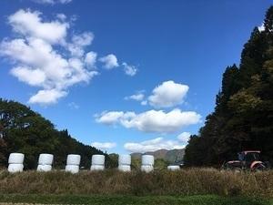 北広島町×稲作・野菜/個人【33927】-top