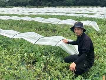 長谷川農園-top