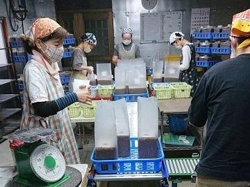 玖珠町×野菜/法人【33940】-1