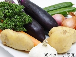 南あわじ市×野菜/個人【33963】-top