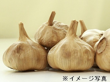静岡市×野菜/法人【34024】-2