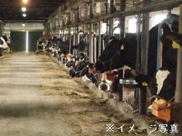 新発田市×酪農/個人【34068】-top
