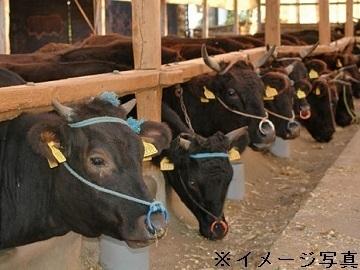 飯豊町×肉牛・稲作/個人【34073】-top