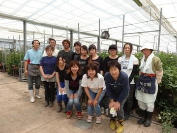 海陽町×花・野菜/法人【34102】-top