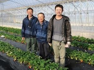 柳田農園-top