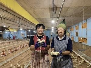株式会社鶏躍蔵-top