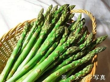 足利市×露地野菜/法人【34144】-top