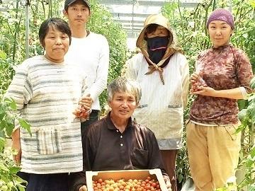 かたやまトマト農園-top