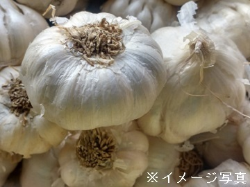 津久井農園-2