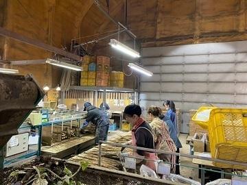 有限会社和田農園-8