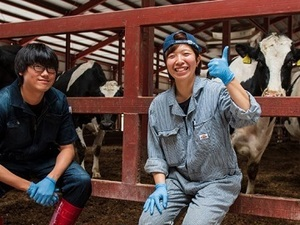 北海道×酪農・肉牛/法人【34182】-top
