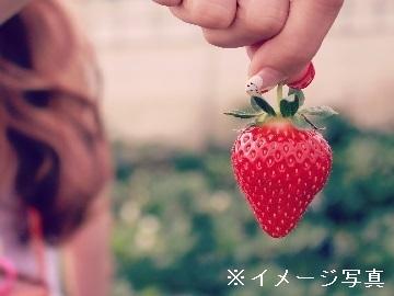 宇佐市×果樹/法人【34207】-2
