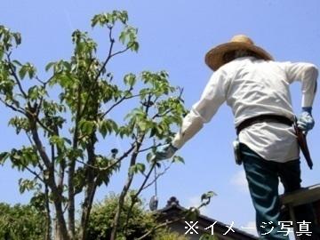 横浜市×造園/法人【1780】-top