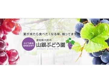 株式会社山銀-top