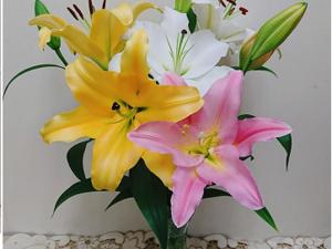 深谷市×花卉/法人【34261】-top