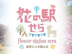 花の駅せら (世羅ゆり園)-top