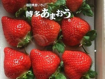 松枝ファーム-5