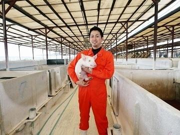 羽生市×養豚/法人【34278】-top