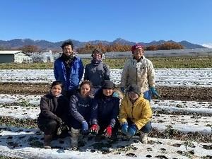 行田農園-top