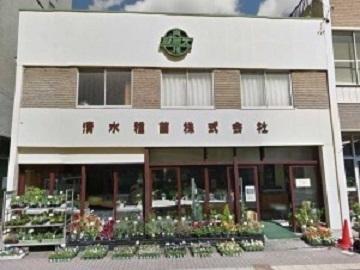 清水種苗株式会社-top