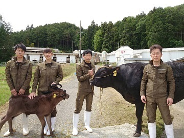 兵庫田中畜産株式会社-top