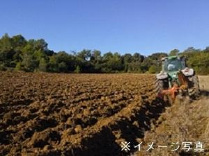山形村×稲作、露地野菜/法人【34356】-top