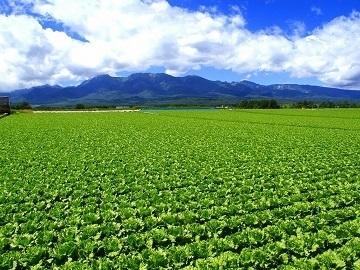 長野県農業法人等就業フェア-top